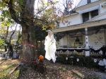 House on White Street